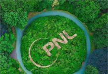 pnl-sl-logo-rung-xanh-1